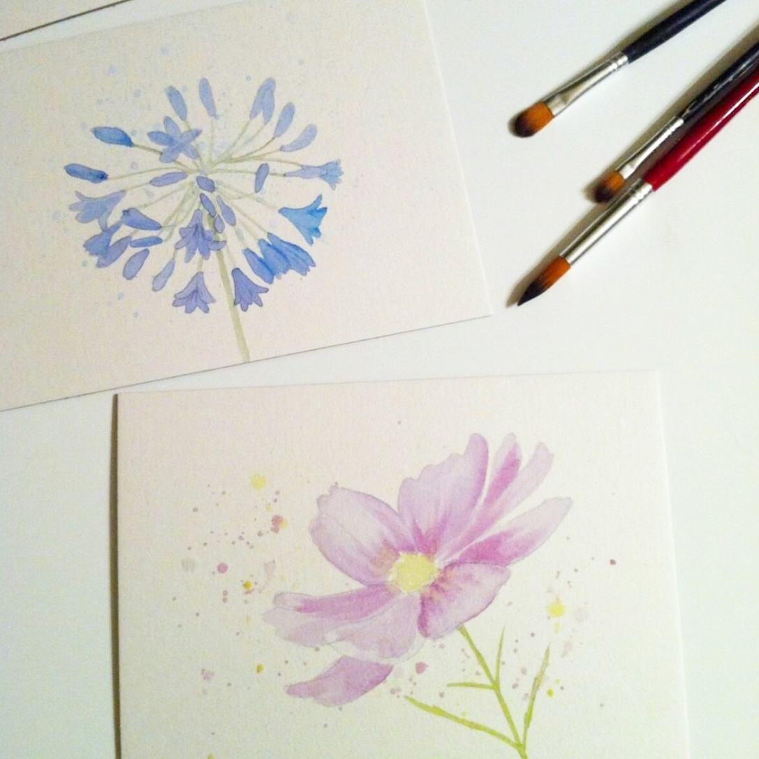 AGAPANTHUS AND COSMOS